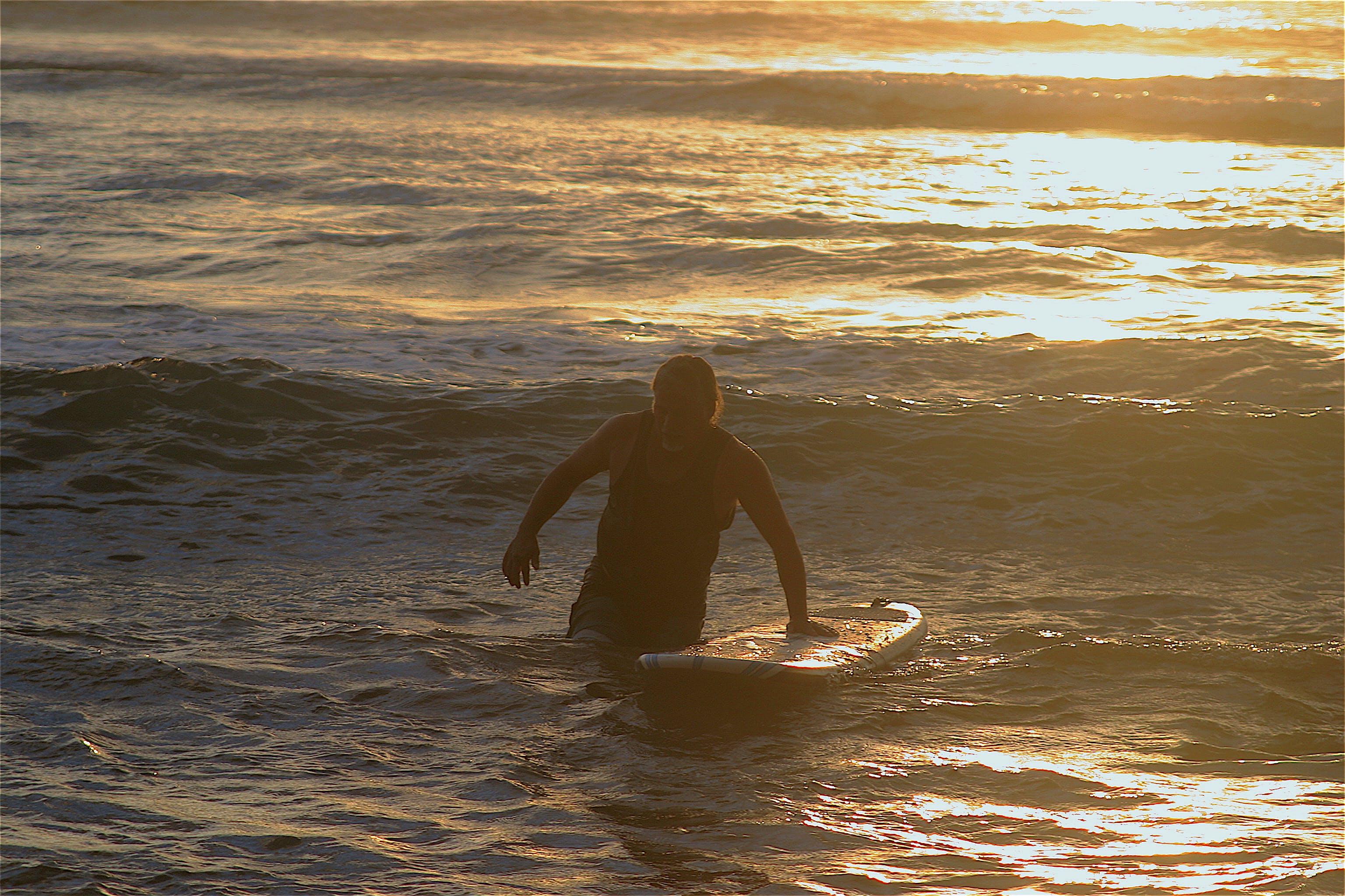 Free stock photo of beach, ocean, surfer