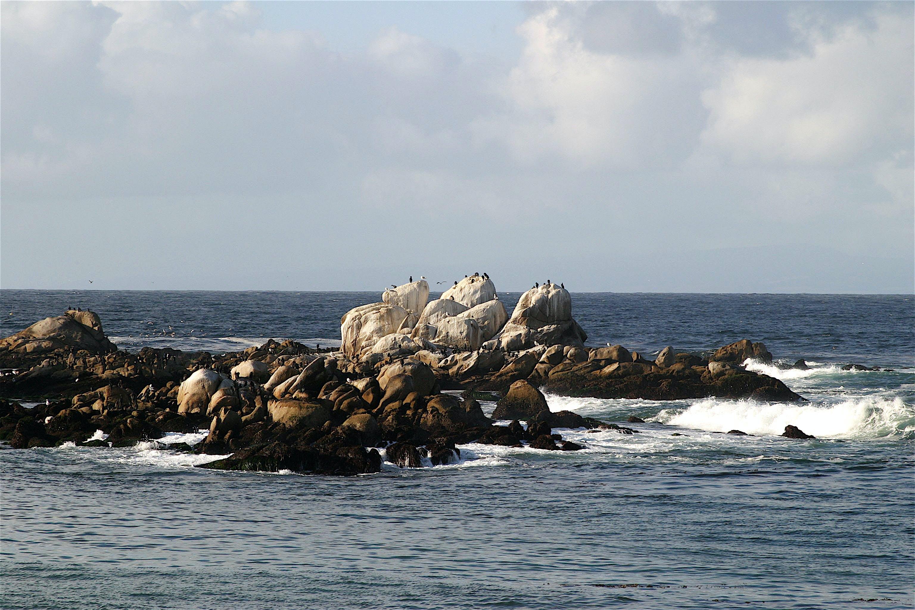 Free stock photo of beach, nature, ocean