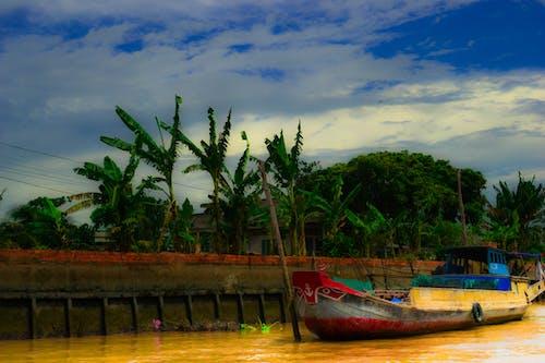 Free stock photo of boat, boat ferry, vietnam