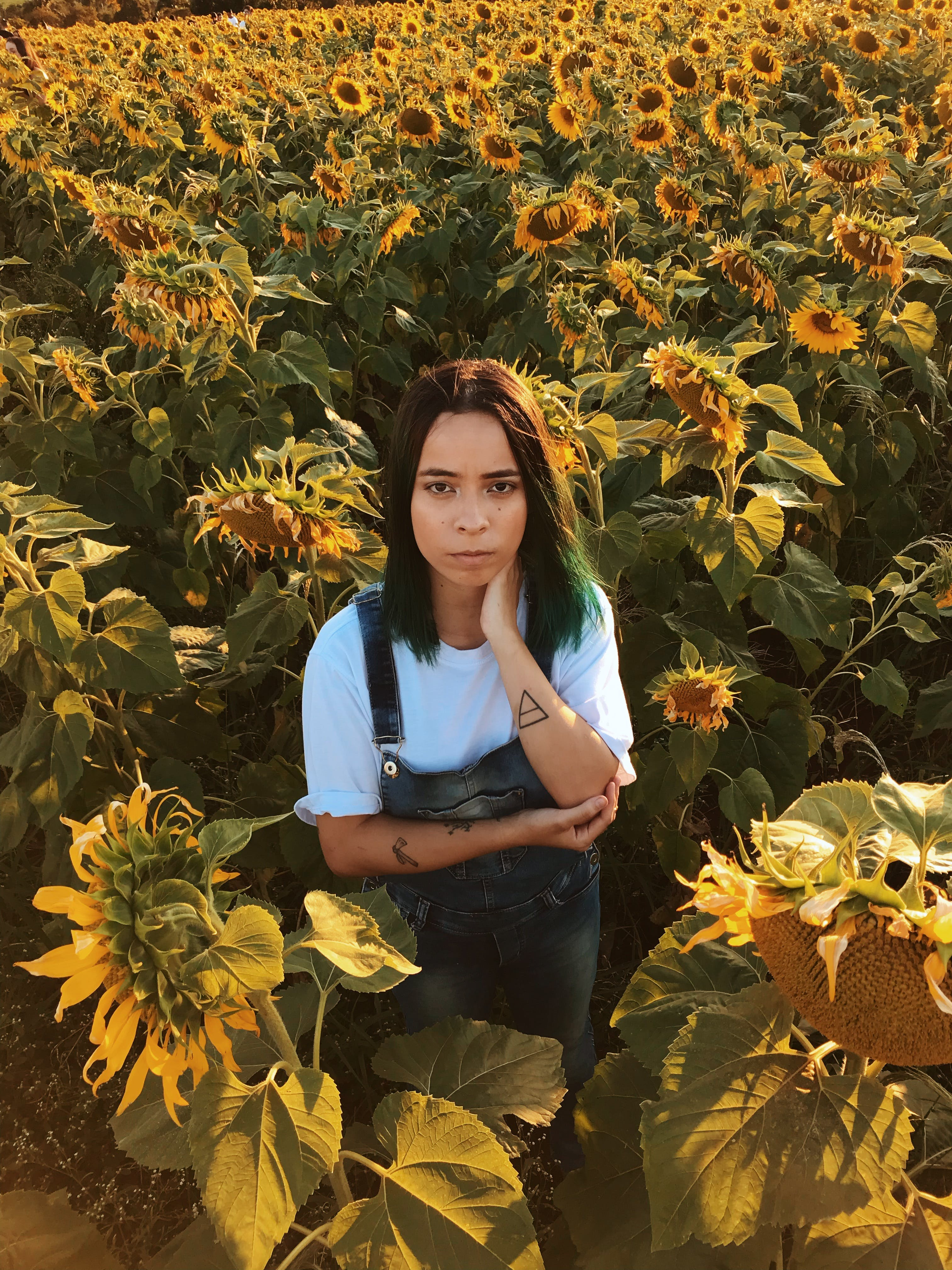 Woman Standing In The Middle Of The Sunflower Field