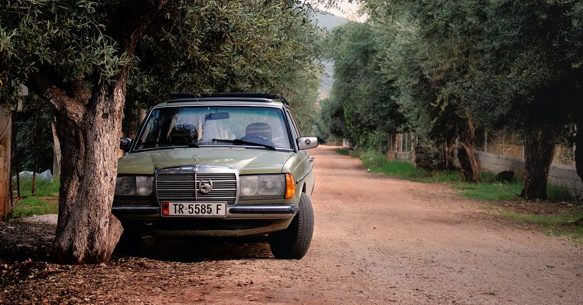 Green mercedes benz w123 parked near tree free stock photo for Mercedes benz albania