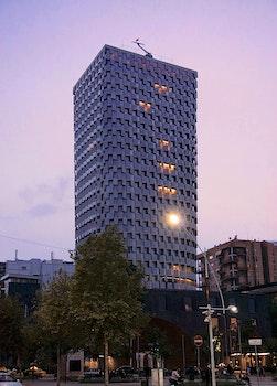 Free stock photo of city, dawn, lights, street