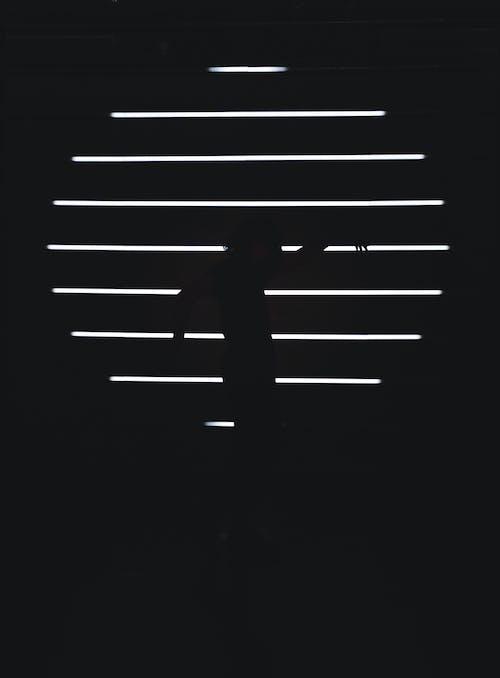 Základová fotografie zdarma na téma černobílý, design, ilustrace, minimalista