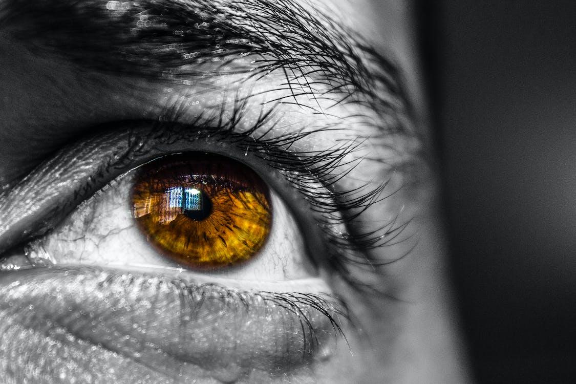 Person's Brown Eye