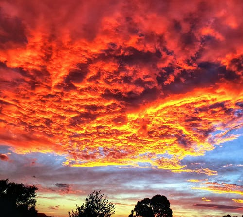 Free stock photo of clouds, fiery, red clouds, red sky