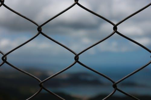 Foto profissional grátis de cerca, cerca de arame, close, estrutura