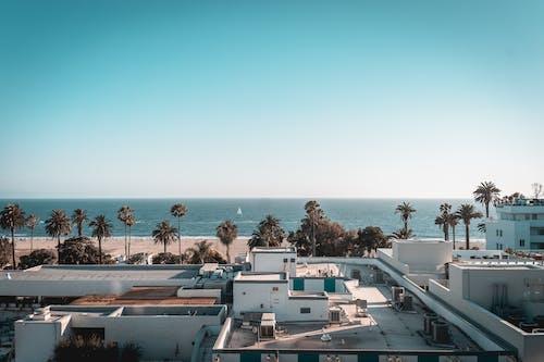 Gratis lagerfoto af blåt vand, los angeles, Santa Monica, solnedgang