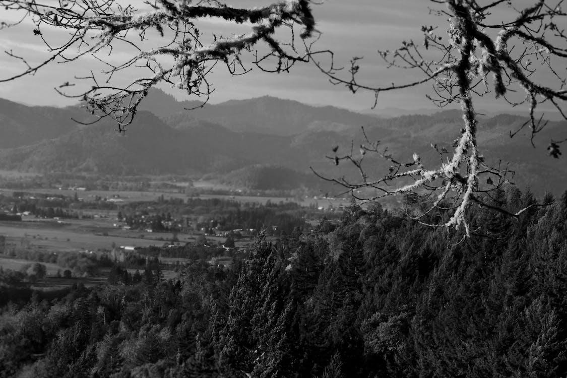 gương soi, núi, oregon