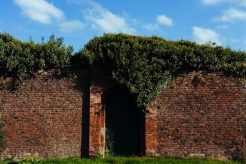 Immagine gratuita di bloccato, cancello, giardino, mattoni