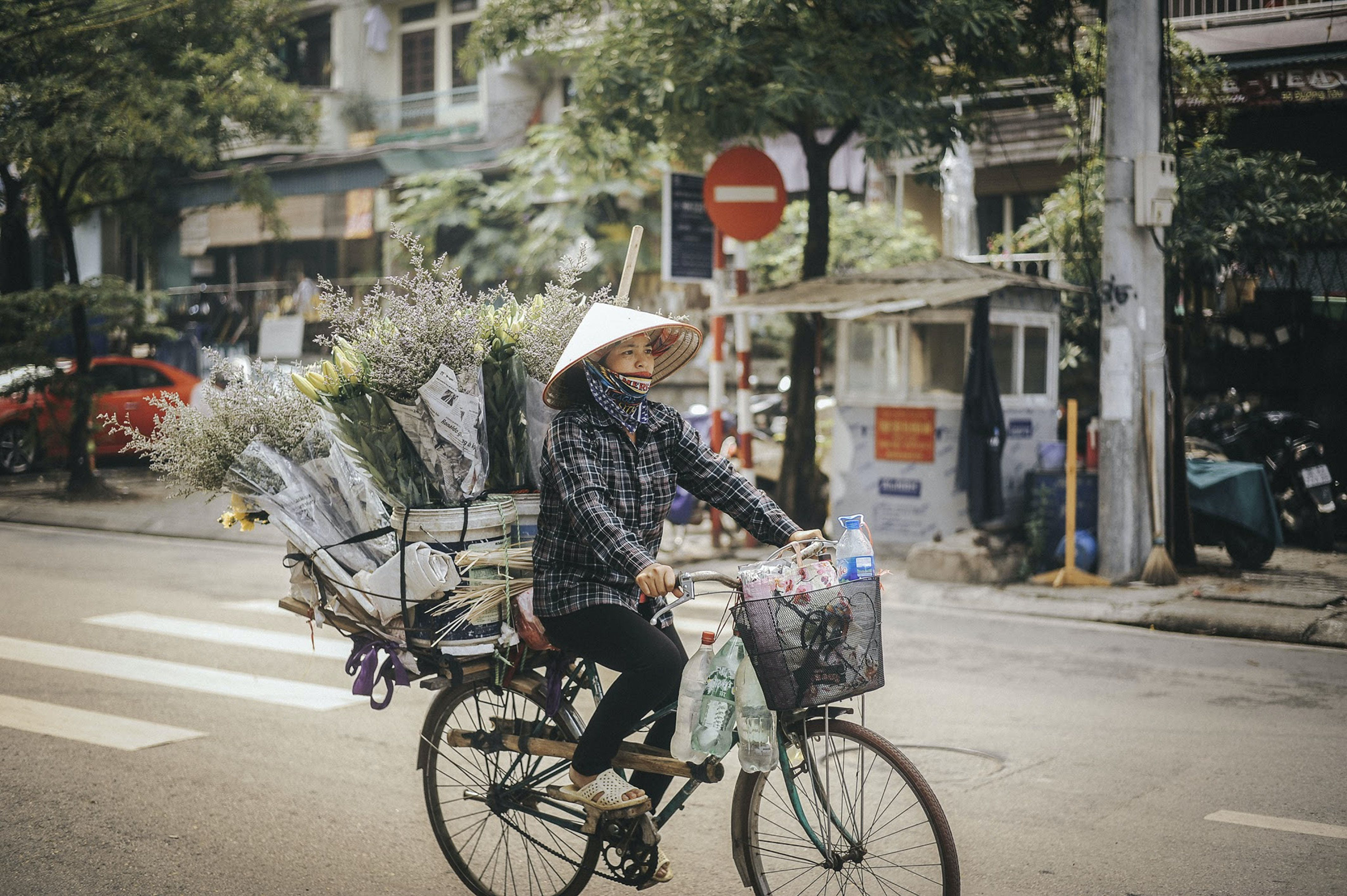 Woman Riding on Bike With Flowers on Her Bicycle Luggage Rack