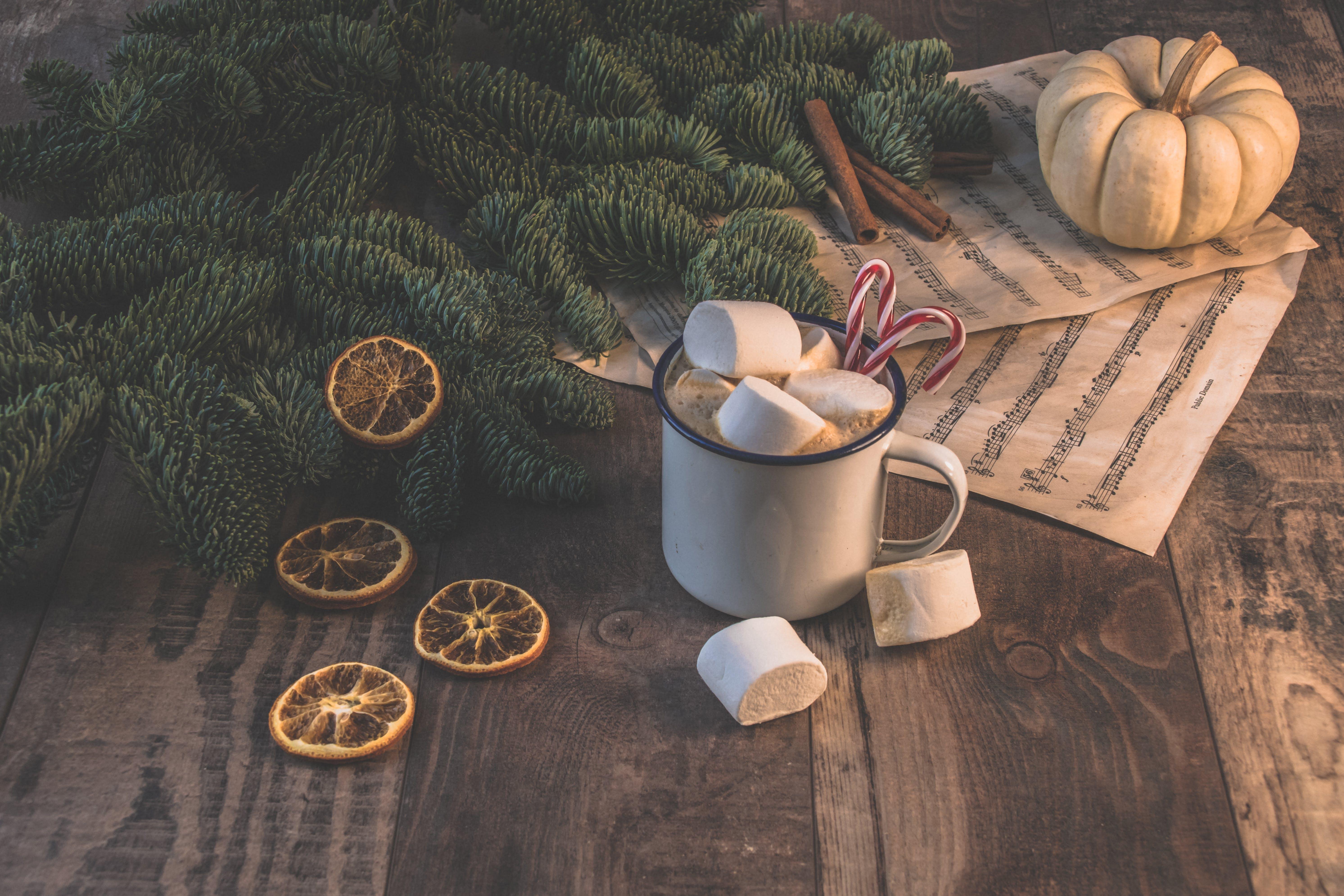 White Ceramic Mug With Coffee and Marshmallows Near Pinetree
