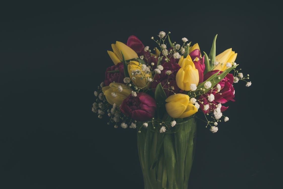 Multicolored Tulips in Vase