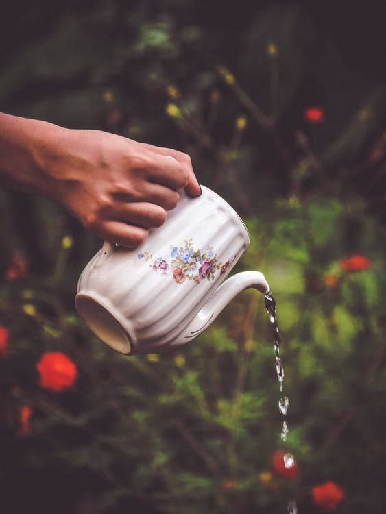 Selective Focus Photography of Person Holding White and Floral Teapot