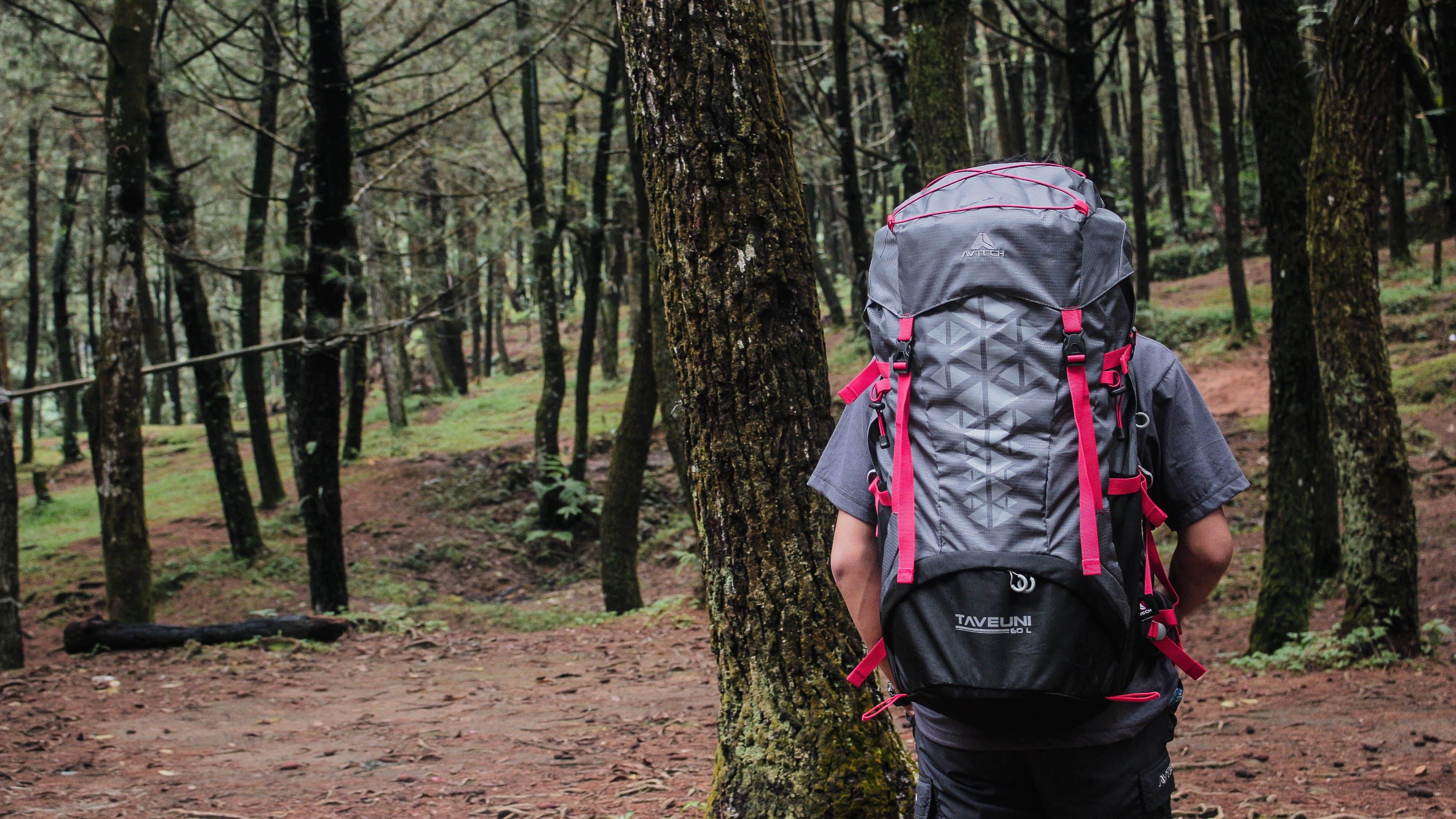 Free stock photo of adventure, hiking, mountain, nature