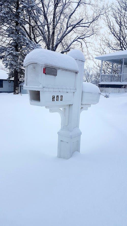 Foto profissional grátis de #snow #winter #cold #mailbox #mn