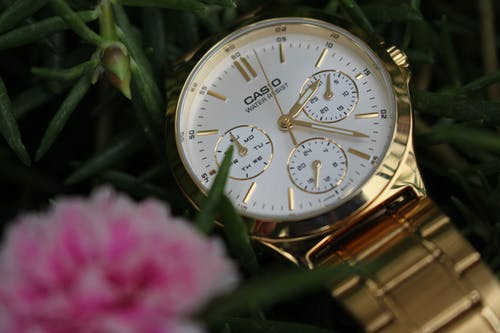 Free stock photo of casio, flower, gold, gold watch