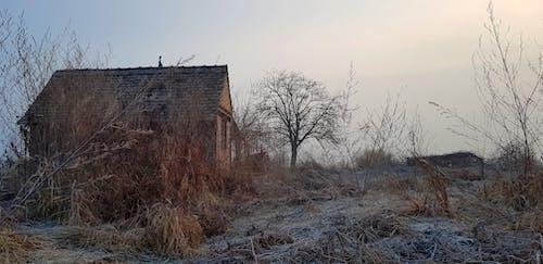 Imagine de stoc gratuită din casă veche, ceață, frig, iarnă