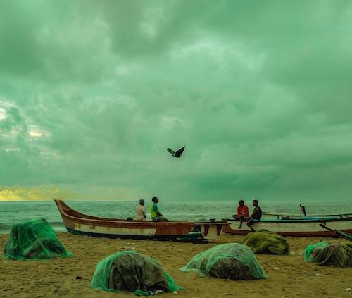 Foto d'estoc gratuïta de alba, barca, cel, corb