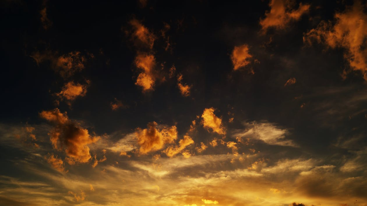 himmel, morgengry, skydække
