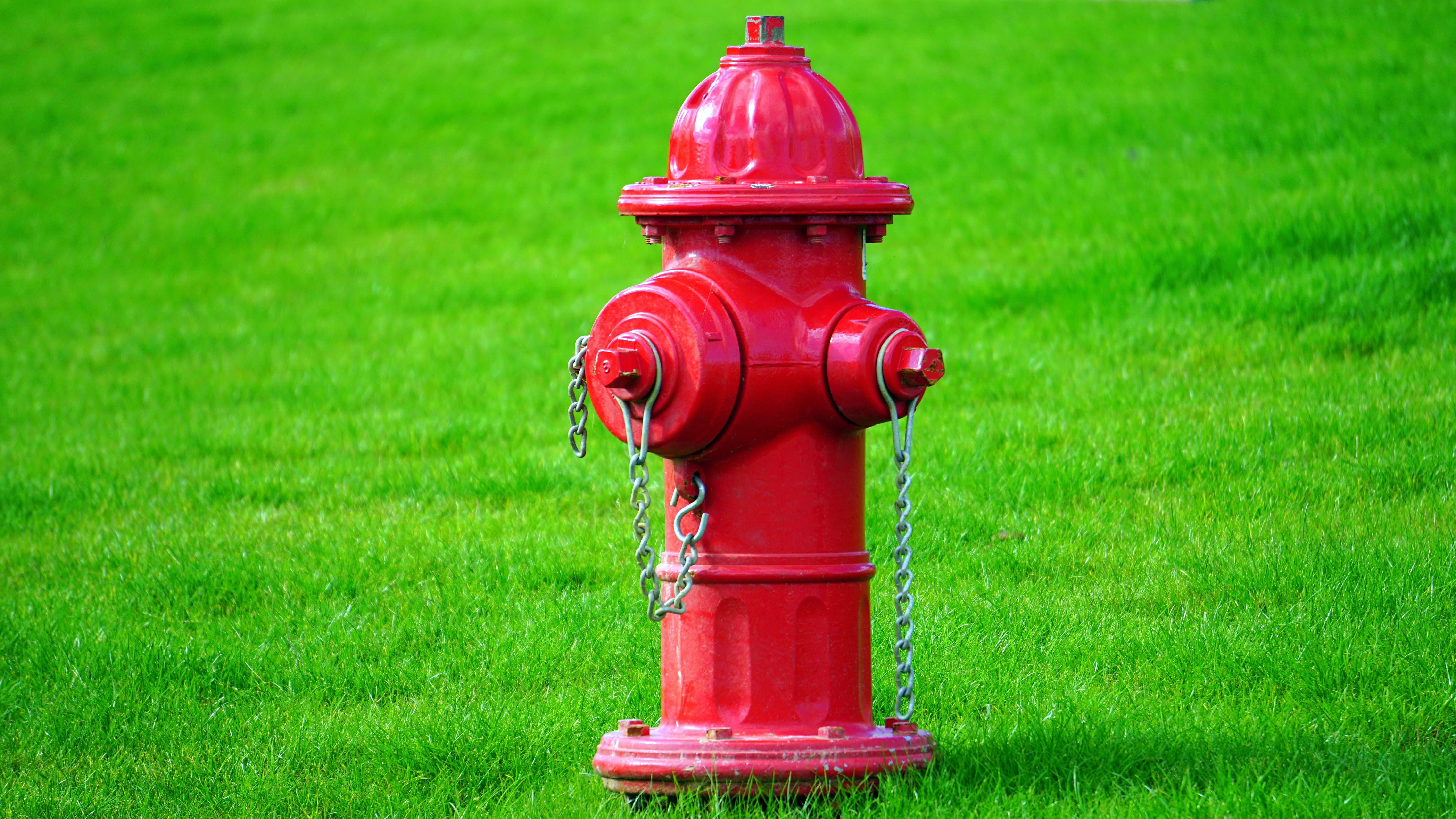 Red Fire Hydrant on Green Grass Field