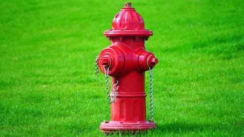 공원, 금속, 들판, 물의 무료 스톡 사진