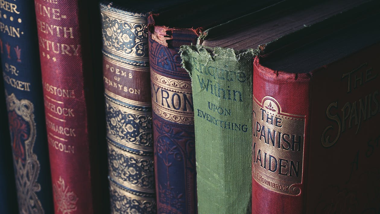 biblioteca, cobrir, coneixement