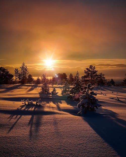 Ilmainen kuvapankkikuva tunnisteilla aamu, auringonlasku, idyllinen, ilta