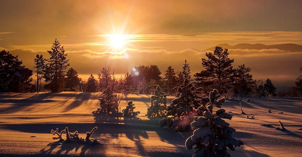 картинка шатура зимний вечер красивый совместная работа режиссёра