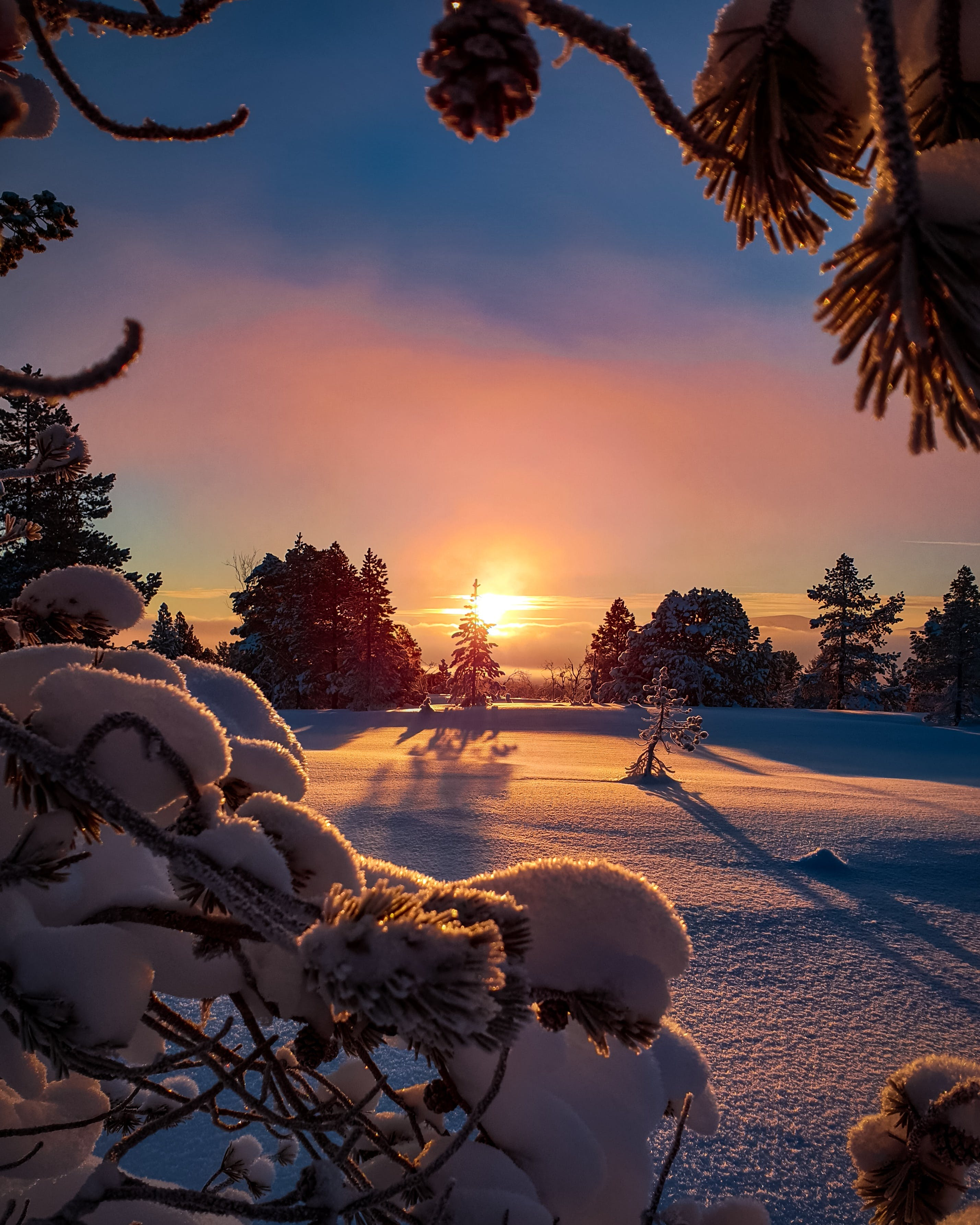 Field Covered With Snow during Sun Rise