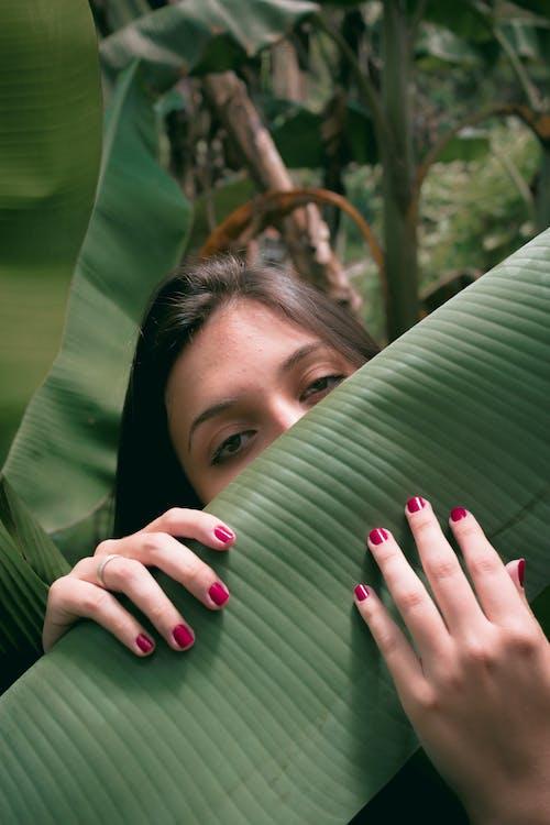 Photos gratuites de feuilles vertes, mains de femme, photographie de portrait, portrait