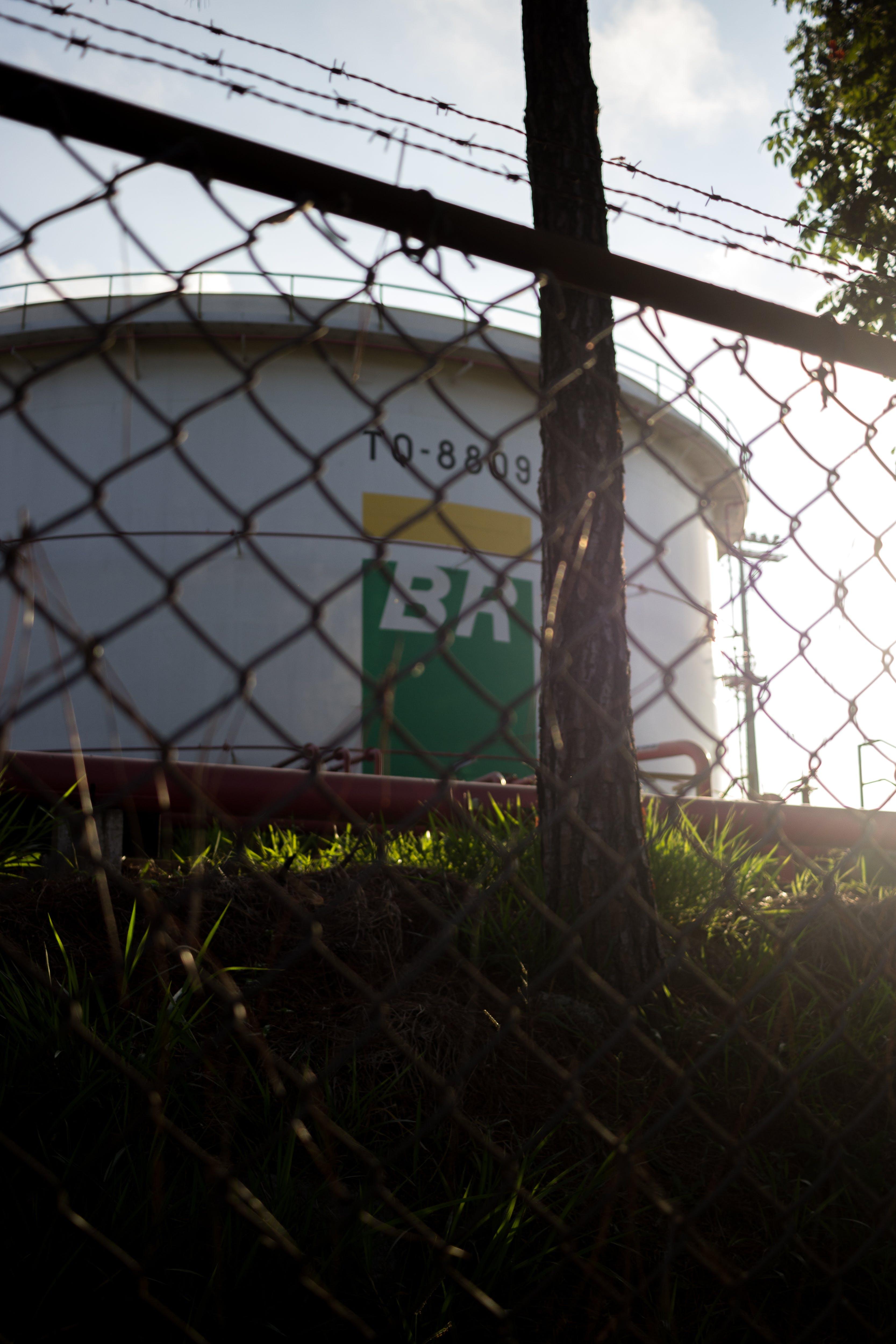 Free stock photo of brasil, dawn, green field, HD wallpaper