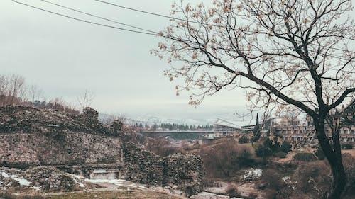 Základová fotografie zdarma na téma černá hora, evropa, fotografie, hory
