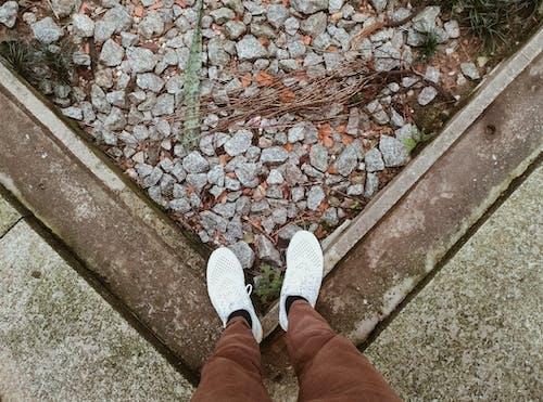 Foto d'estoc gratuïta de composició, estil, estil de vida, roba