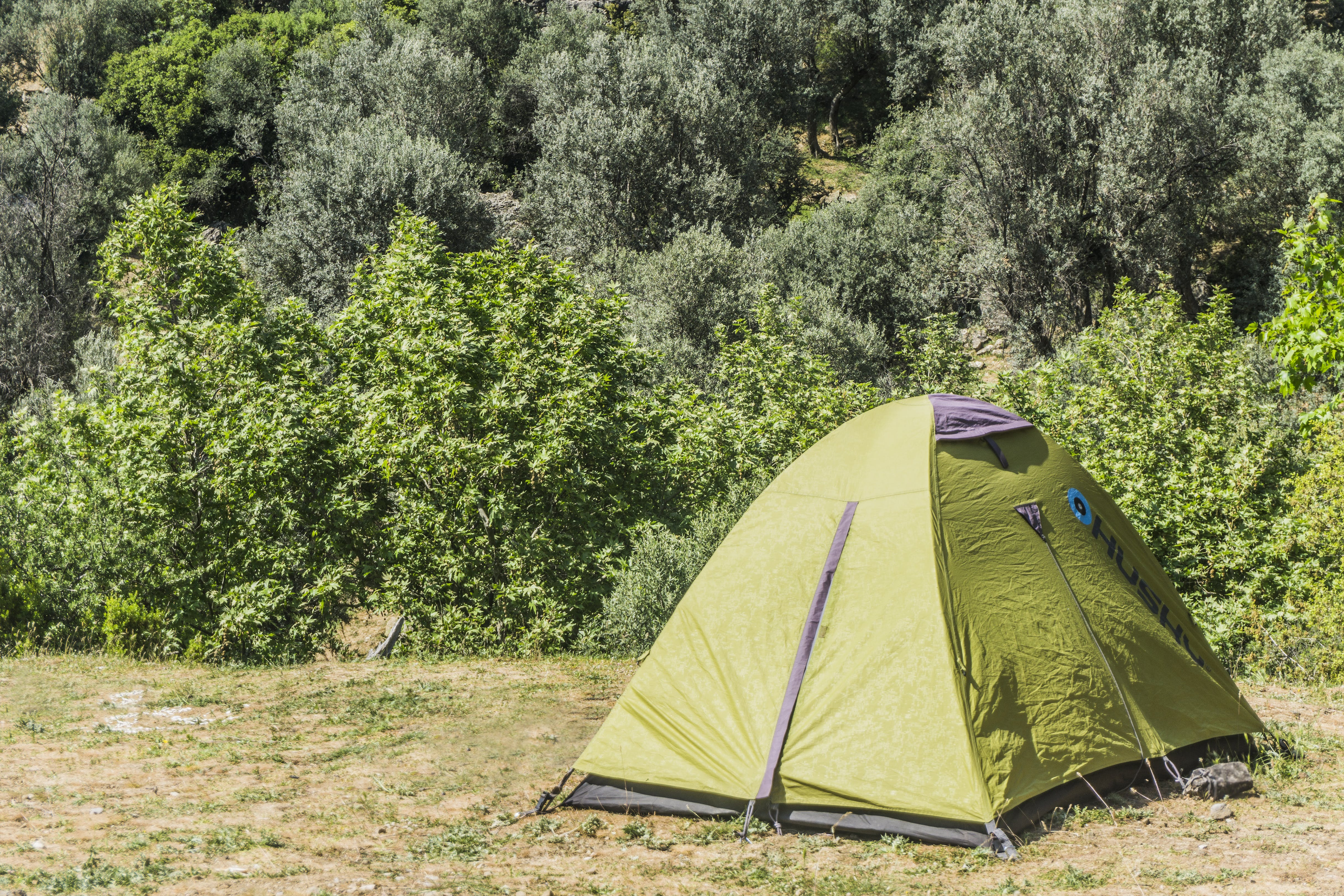 Free stock photo of camping, nature, tent