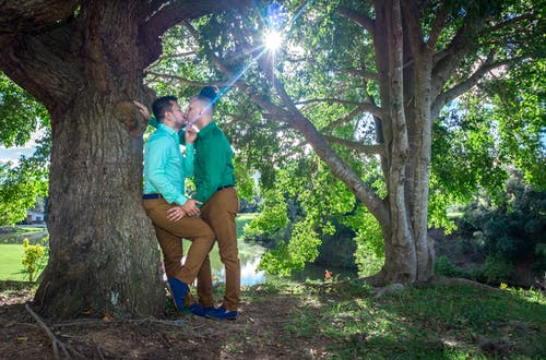 Free stock photo of gay, just married, love