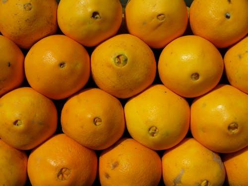 Ilmainen kuvapankkikuva tunnisteilla appelsiinit