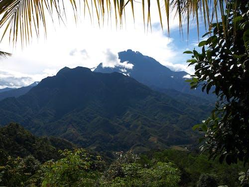 Ilmainen kuvapankkikuva tunnisteilla vuori