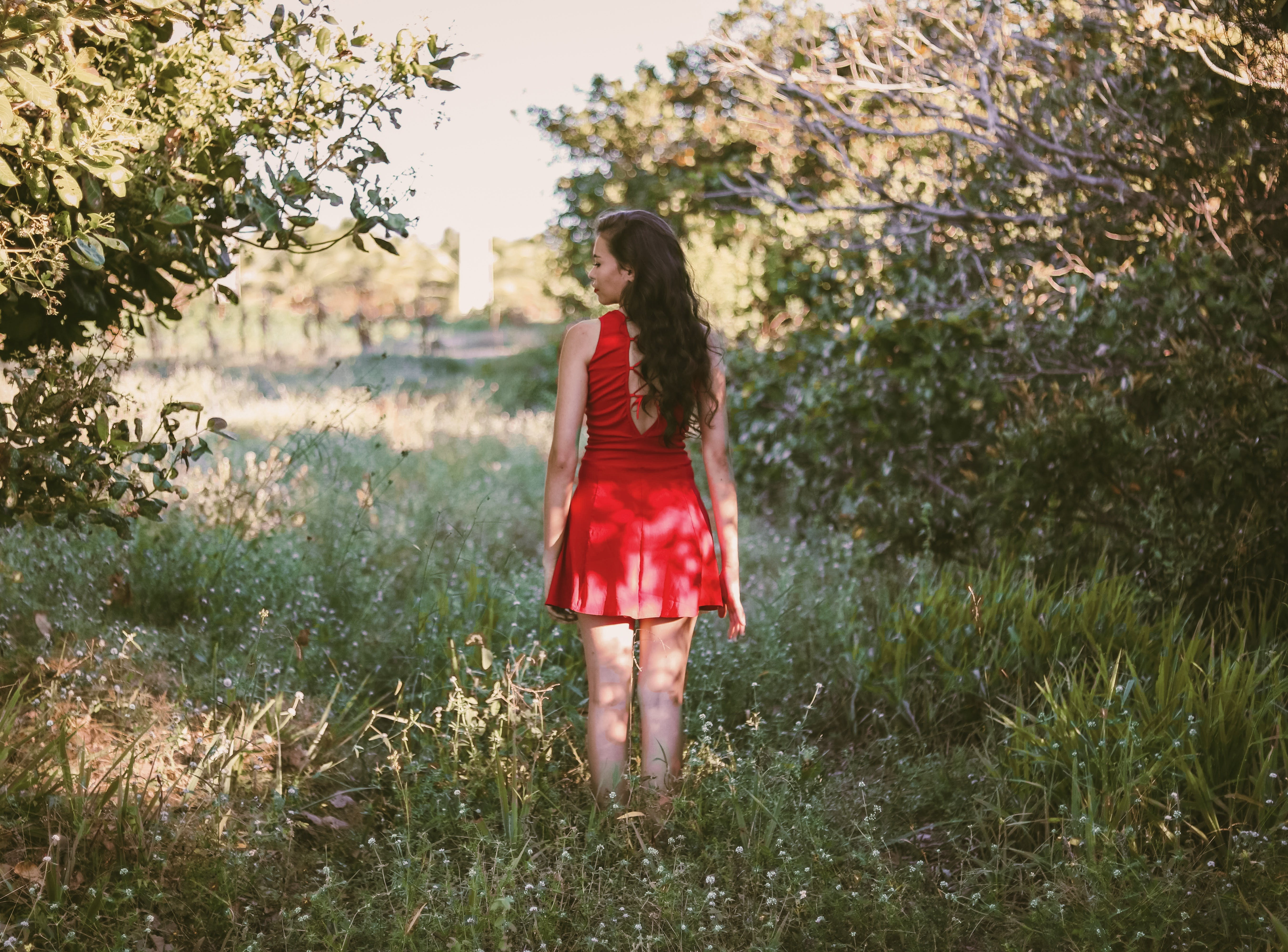 Back View Photo of Woman in Red Dress Standing Outdoors