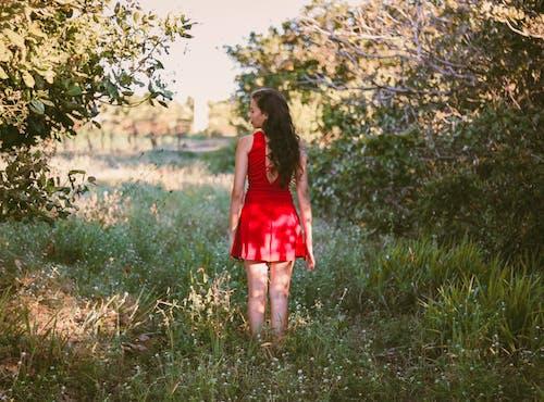 Immagine gratuita di alberi, donna, erba, in piedi