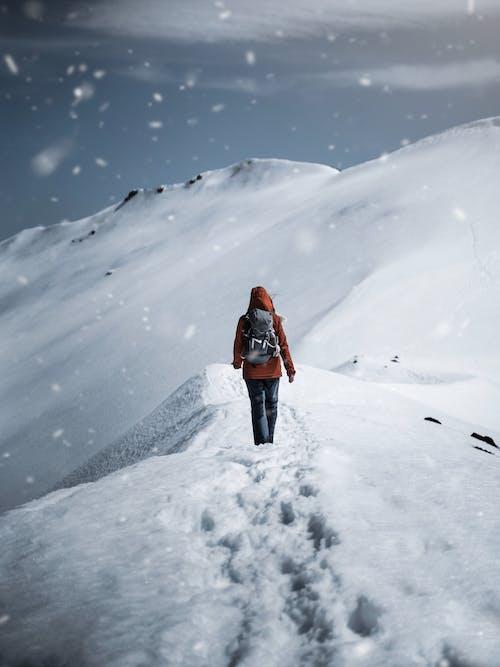 Gratis stockfoto met avontuur, backpack, besneeuwd, bevroren