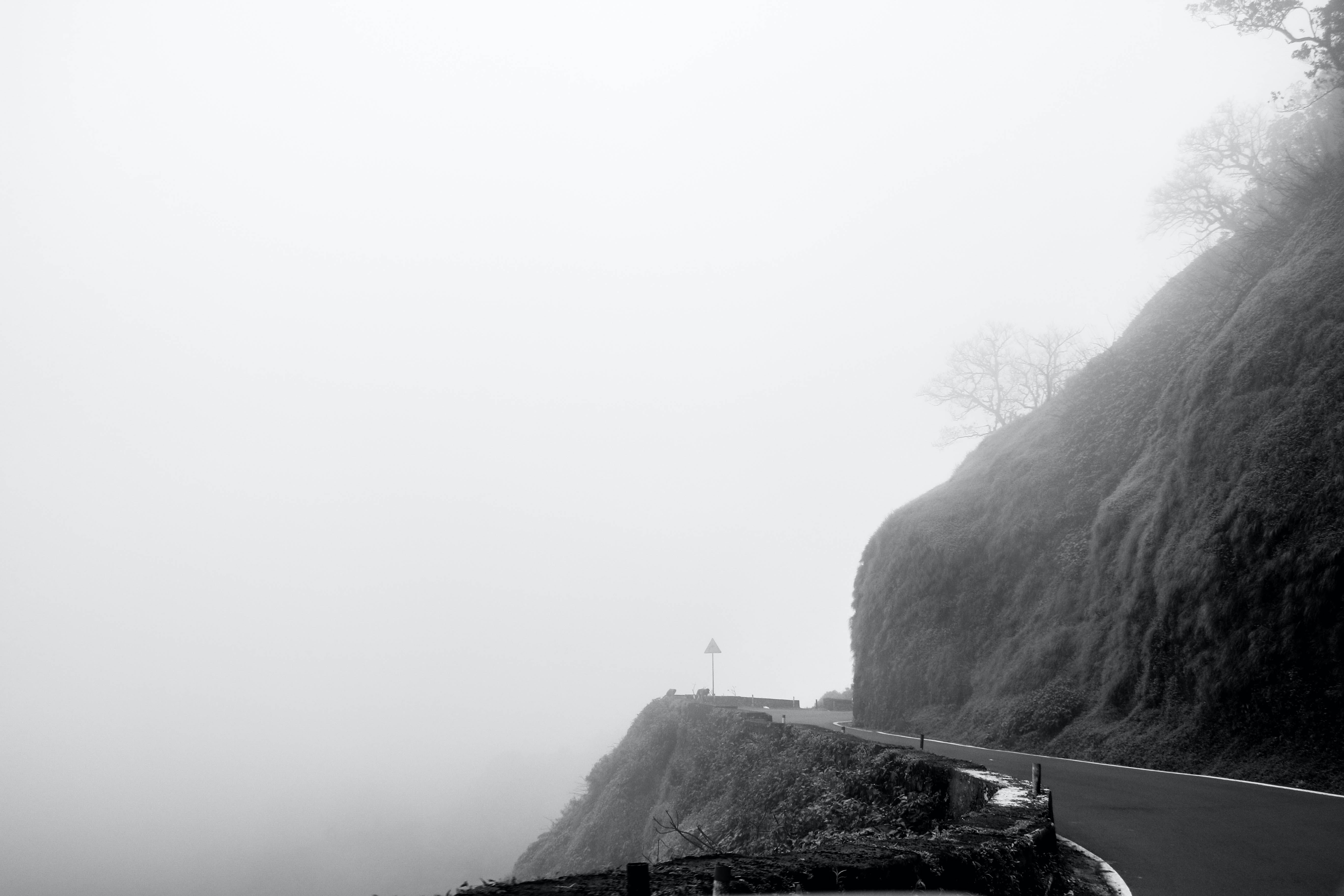 Free stock photo of black and white, countryside, dramatic, foggy