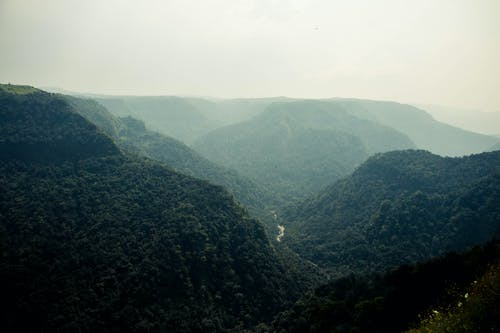 Free stock photo of dramatic, foggy, green, india