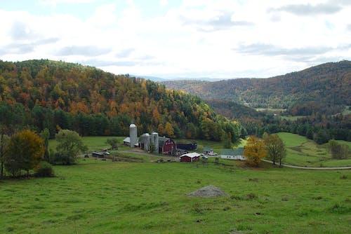 Free stock photo of fall foliage, farm, green mountains, mountains