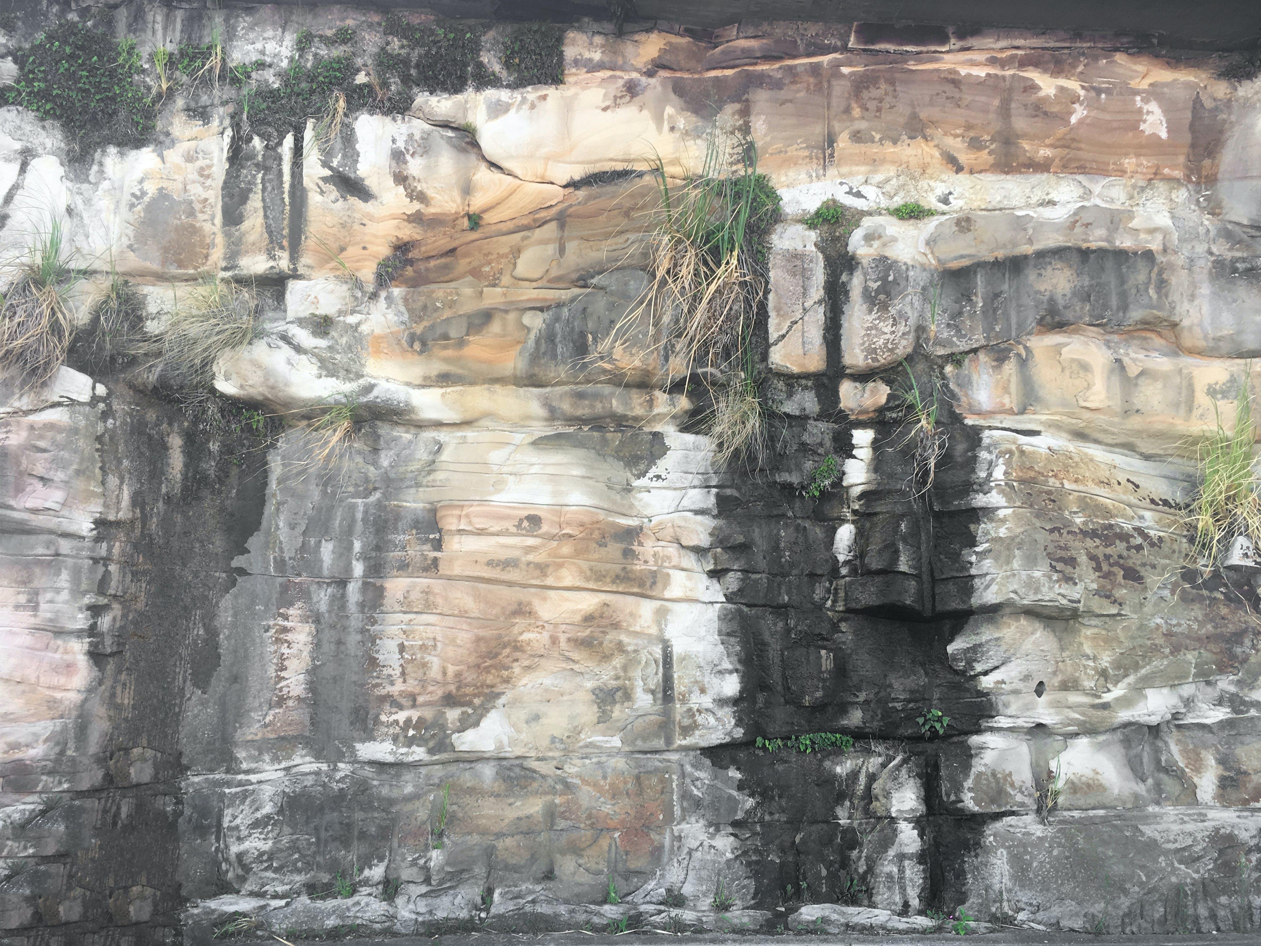 Free stock photo of Balmain, bedrock, rock, rock wall