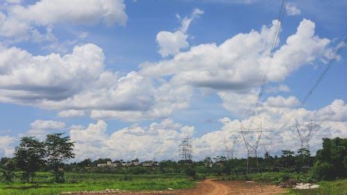 Immagine gratuita di alberi, cielo nuvoloso, indonesia, luminoso