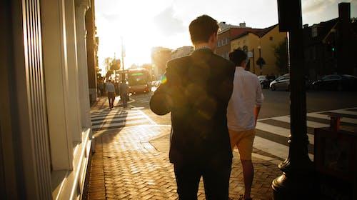 バックライト, 日没, 通りの無料の写真素材