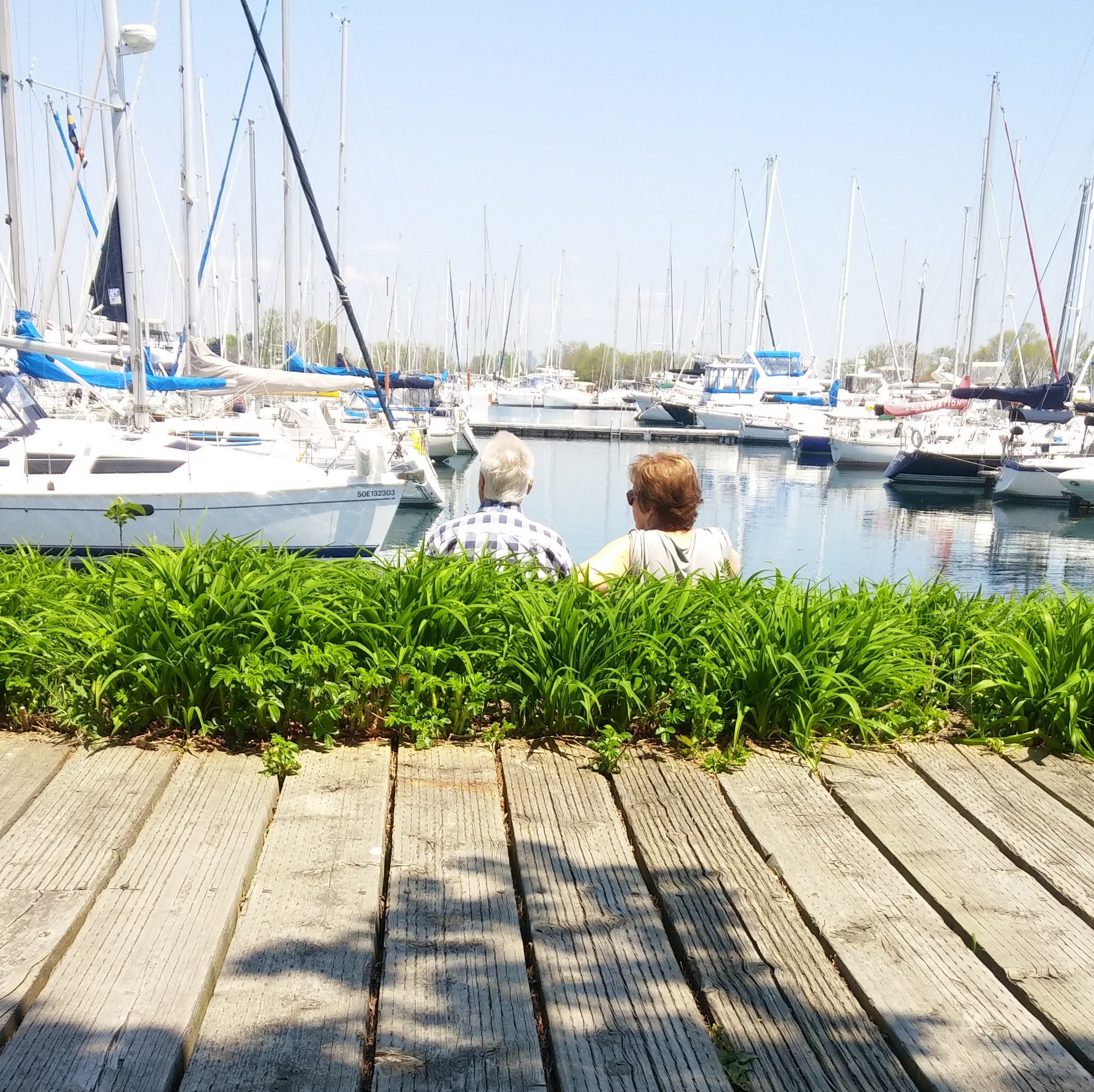 Free stock photo of boats, couple, harbour, park