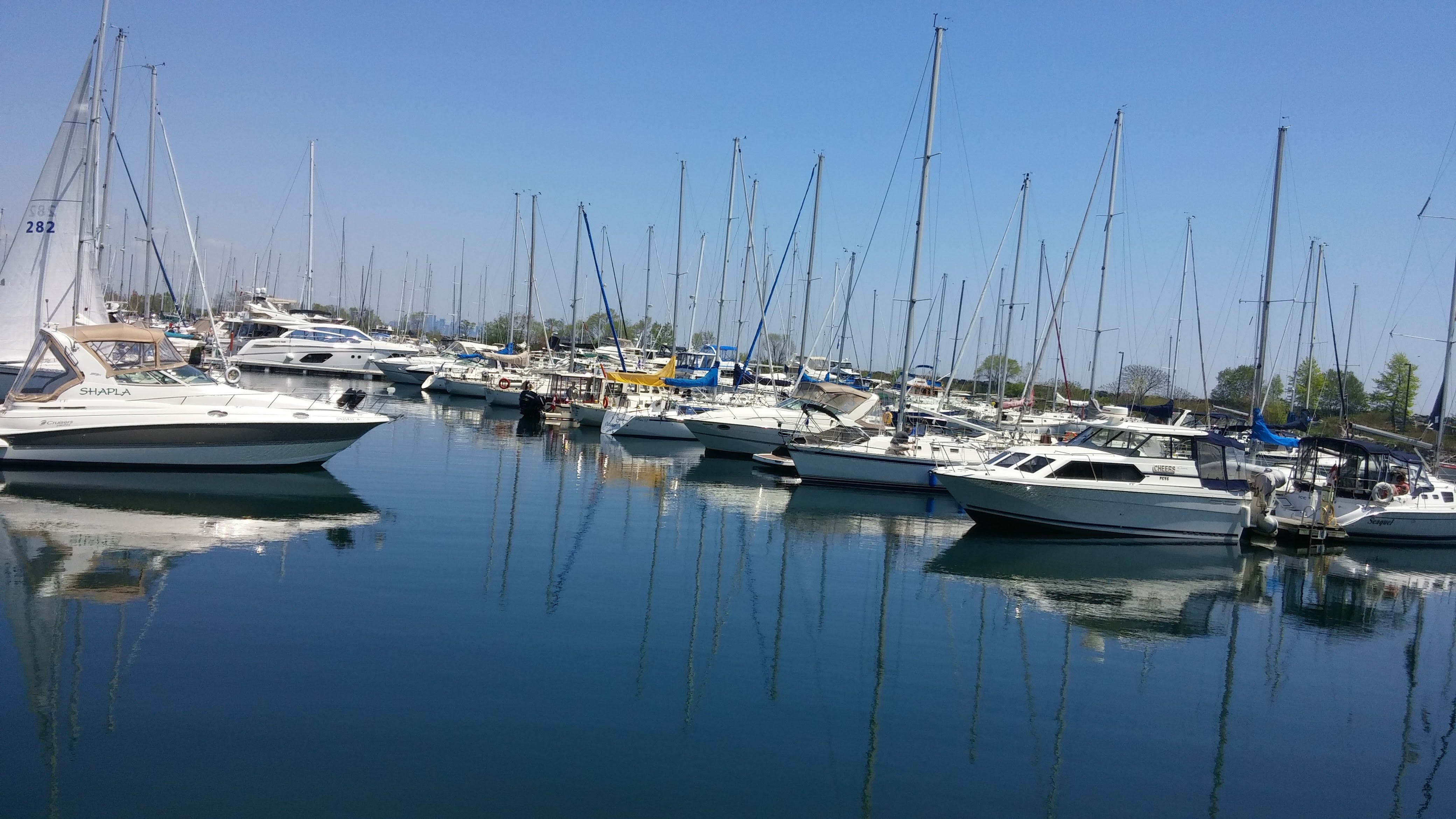 Free stock photo of boats, harbour, sailboats, water