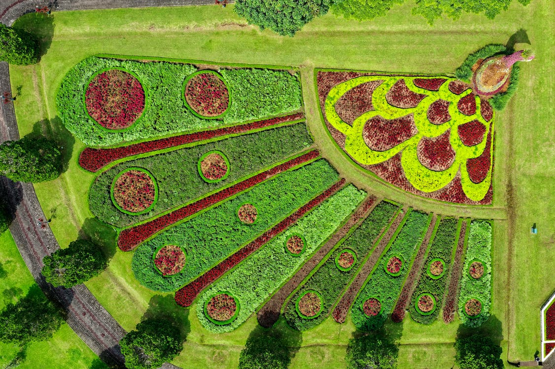Top View Photo of of Peacock Landscape Design