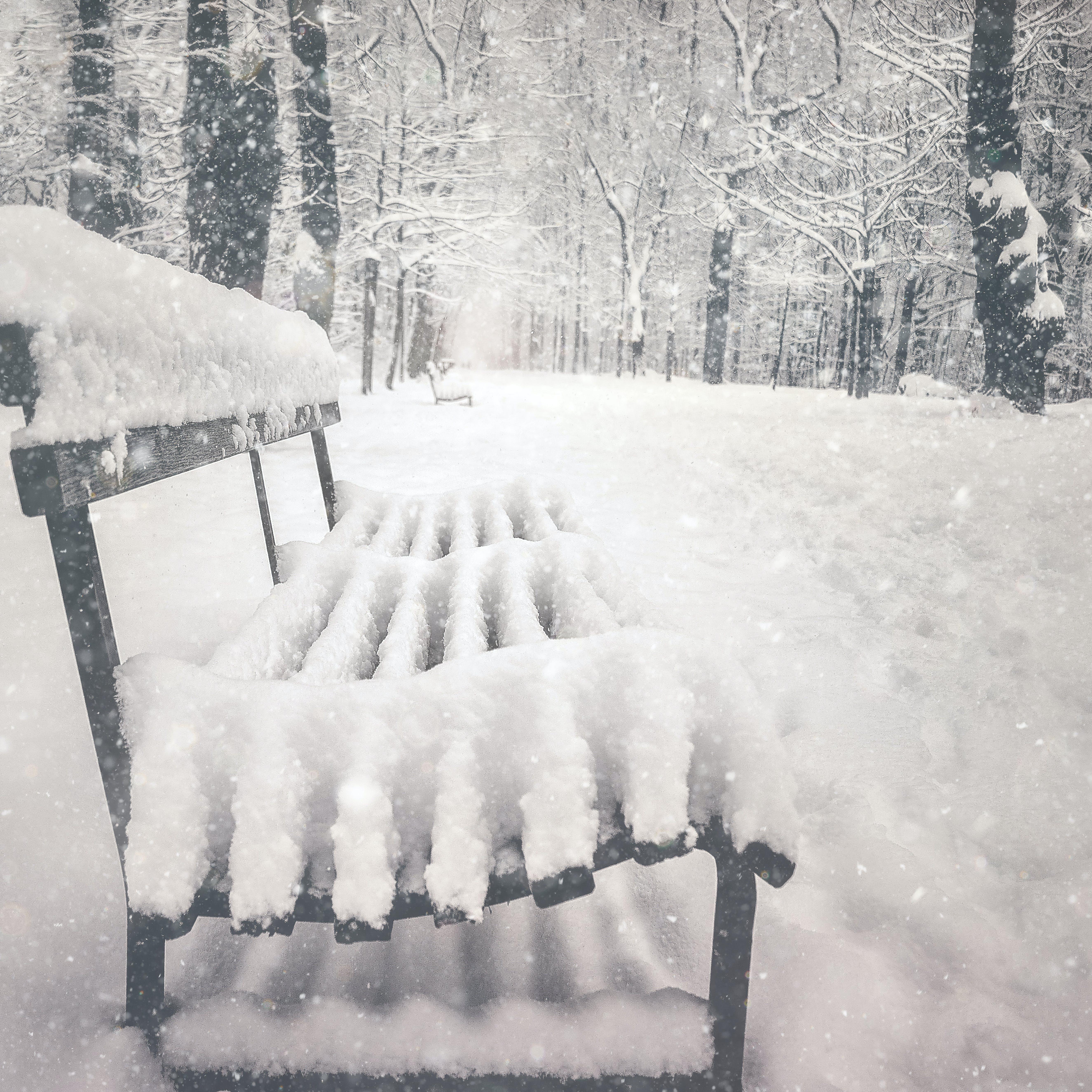 Free stock photo of austria, bench, snow, snowing